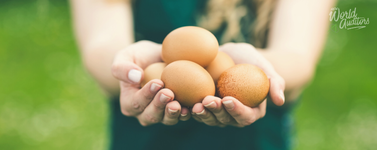 Avoiding Illness from Eggs